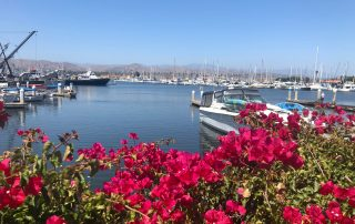 The Harbor is a favorite spot in the city and home to many of the top summer events in Ventura.